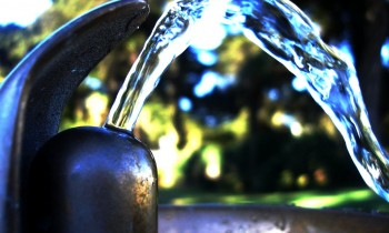 The Importance of Drinking Water